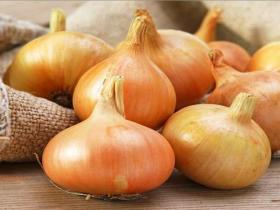 ONION SEEDS - STUTTGARTEN RIESEN