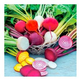 BEETROOT MIX - RAINBOW MIX