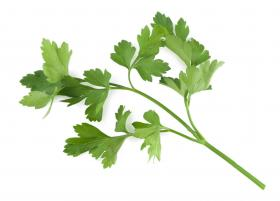 PARSLEY FLAT - LAURA