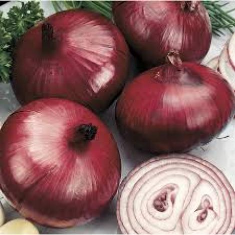 Packet - ONION - RED BARON - organic seeds
