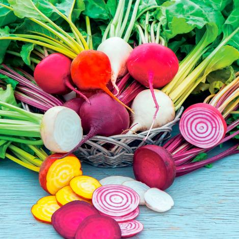 Packet - BEETROOT MIX - RAINBOW MIX - organic seeds