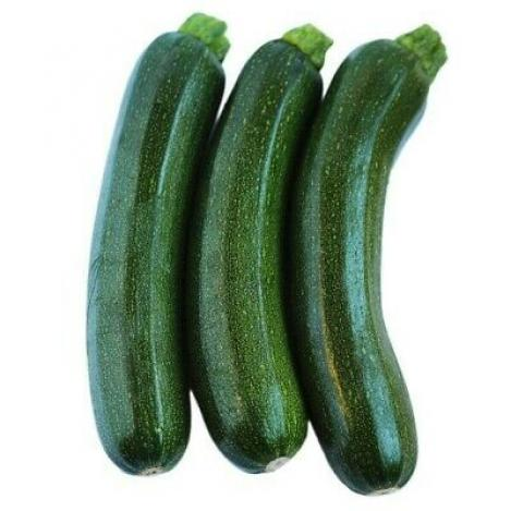 Packet - COURGETTE AMBASSADOR F1 - organic seeds